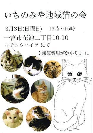 CCI20190301.jpg